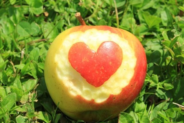 fruit-1053099_960_720